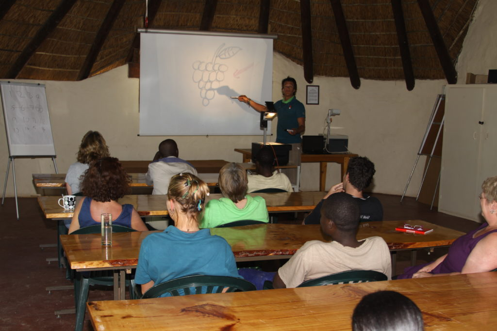High Africa, Conference Venue, Team Building, School Camps